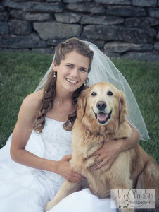 wedding and pet photographers