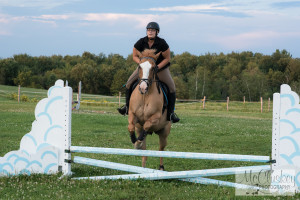 horse jumping photographs
