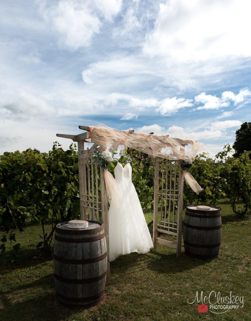 bella brooke vineyard and winery